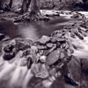 Pigeon Forge River Great Smoky Mountains Bw Art Print