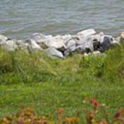 Pile Of Rocks On Shoreline Art Print