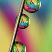 Pin Drop Art Print