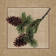 Pine Cone Design Art Print