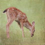 Pine Cone Lunch Art Print