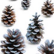 Pine Cones Looking Like Christmas Trees On White Snowy Backgroun Art Print