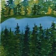 Pine Lake Art Print