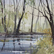 Pine River Reflections Art Print