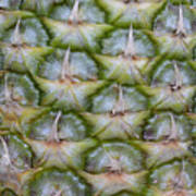 Pineapple Close-up Art Print