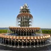 Pineapple Fountain In The Park Art Print