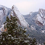 Pines And Flatirons Boulder Colorado Art Print