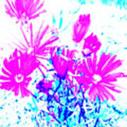 Pink And Blues Art Print
