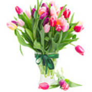 Pink And Violet Tulips Bouquet  Art Print