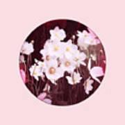 Pink And White Anemones Art Print