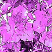 Pink Bevy Of Beauties On A Sunny Day In Violet Art Print