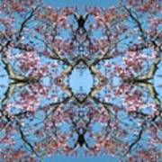 Pink Blossom Mandala Art Print