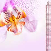 Pink Blotchy Orchid Calendar 2016 Art Print
