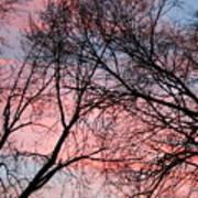 Pink Blue Sky Art Print