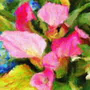 Pink Calla Lilly Art Print