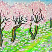 Pink Cherry Garden In Blossom Art Print