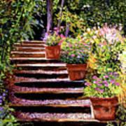 Pink Daisies Wooden Steps Art Print by David Lloyd Glover