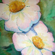 Pink Disc Flowers Art Print