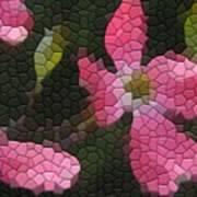 Pink Dogwoods Art Print