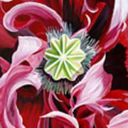 Pink Entanglement Art Print