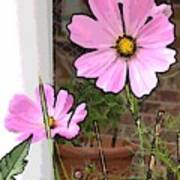 Pink Flowers Of Summer Art Print