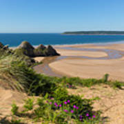 Pink Flowers The Gower Coast Three Cliffs Bay Wales Uk Beautiful Welsh  Holiday Destination by Michael Charles