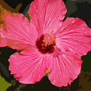 Pink Hibiscus Art Print by Kimberly Camacho