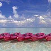Pink Kayaks Lined Up Art Print