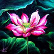Pink Lotus From L.a. City Park Art Print
