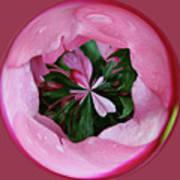 Pink Orb Art Print