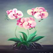 Pink Orchids 2 Art Print