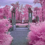 Pink Path To Paradise Art Print