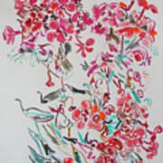 Pink Phloxes Art Print