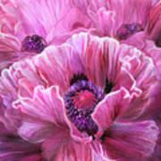 Pink Poppy Splash Art Print