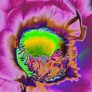 Pink Psychedelic Cirrus Art Print