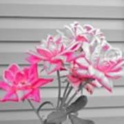 Pink Rose Tree Pop Art Print