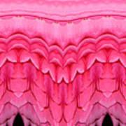 Pink Roses Polar Coordinates Effect 1 Art Print