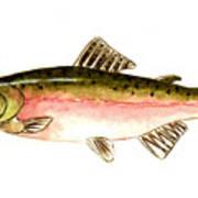 Pink Salmon Art Print