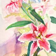 Pink Stargazer Lilies Art Print