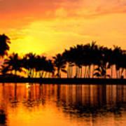 Pink Sunset And Palms Art Print