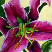Pink Tiger Art Print