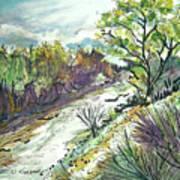 Placerita Creek 3 Art Print