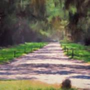 Plantation Road South Carolina Art Print
