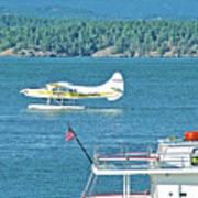 Plane Coming Into Friday Harbor On San Juan Island, Washington Art Print
