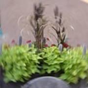 Plant Circle Art Print