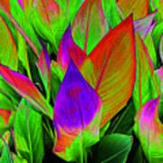 Plant Details Art Print