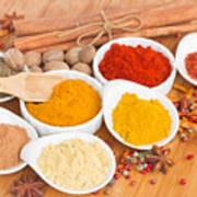 Plates Of Spices  Art Print