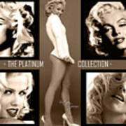 Platinum Collection Print by Anibal Diaz
