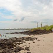 Playa De La Estacion On Santa Cruz Island In Galapagos Art Print