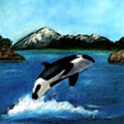 Playful Orca Art Print